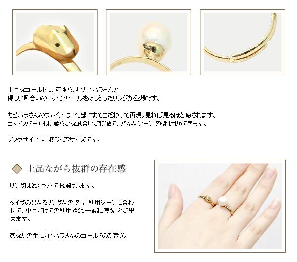 Kapibara-san Capibara goods (36)