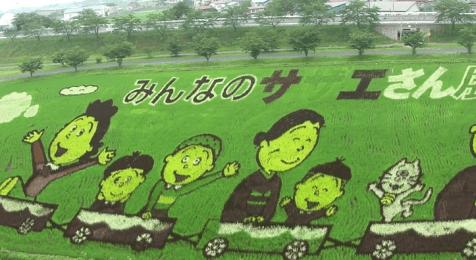 risposta giapponese ai cerchi nel grano pivelli la Tanbo art arte con i campi di riso (3)