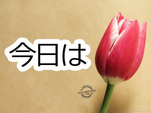 miti-come-si-dice-ciao-in-giapponese-cfr-konnichiwa-errori-inglesi-4