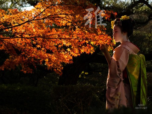 agenda proverbi giapponesi agosto luglio 03