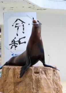 La febbre del sabato Reiwa animali (8)