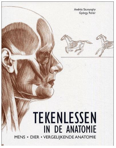 Tekenlessen In De Anatomie