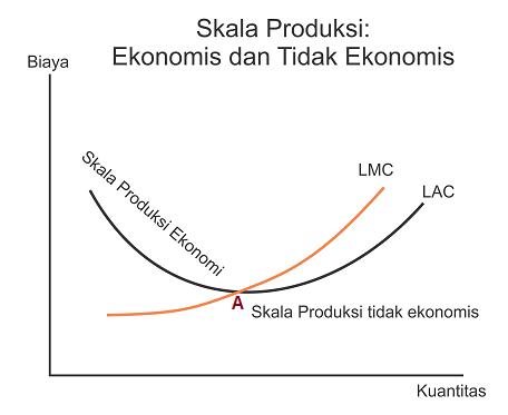 Teori biaya produksi - Skala Produksi Ekonomi dan Tidak Ekonomis