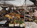 Pasar Input : Pengertian, jenis dan contoh pasar input