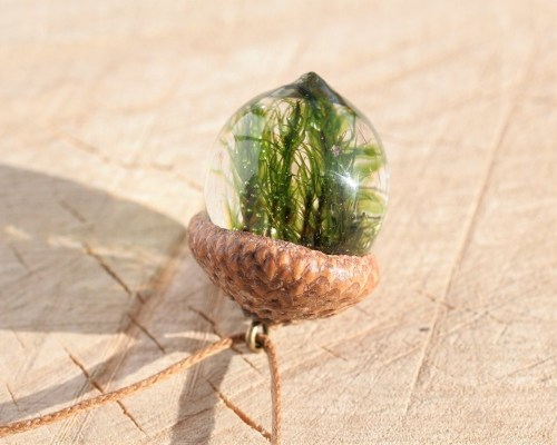 natural-necklace-acorn-moss