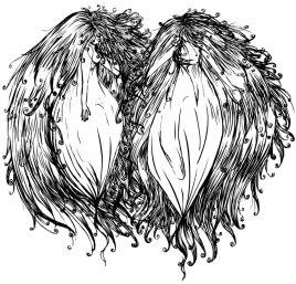 Twins (Noir et blanc)