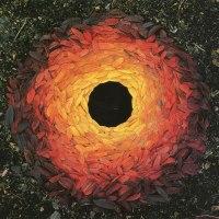 Andy Goldsworthy, l'automne et le Land Art