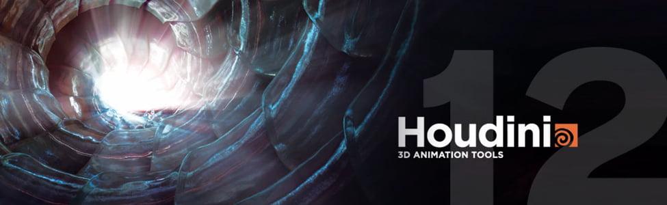 Houdini 12