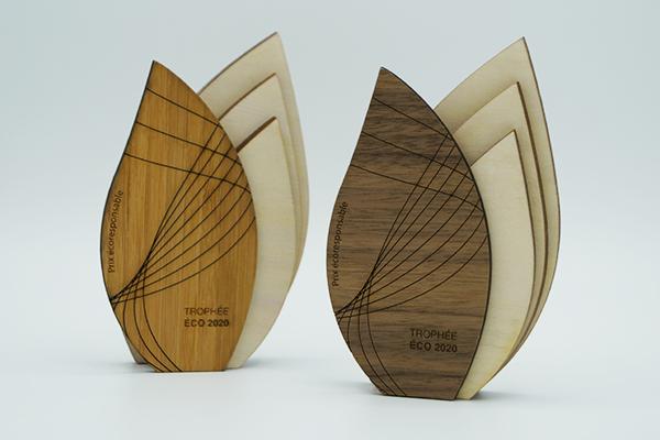 trophée sur mesure en bois, trophée-sculpture artistique, création artisanale éco-responsable, artisanat d'art, trophée écologique forme naturelle