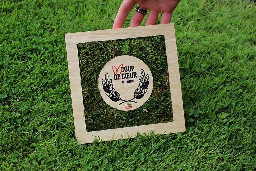 trophée végétal, pour entreprise, trophée mousse et bois, logo d'entreprise, sur de l'herbe, studio l'ingrédient