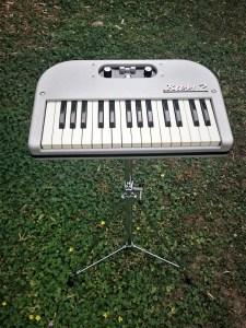 studio-la-boite-a-meuh-Hohner-bass-2-basset