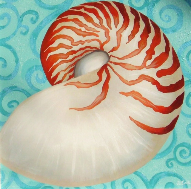 Nautilus Shell Painting – New Acrylic On Canvas Painting