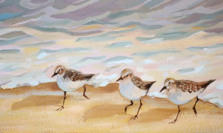 Sandpiper Birds Oil Painting 3rd Update