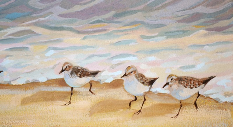 sandpiper birds running on beach oil painting