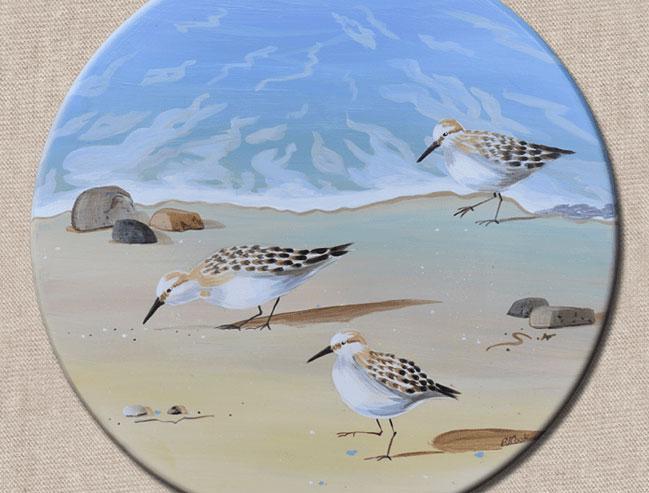 New Sandpiper Bird Painting!
