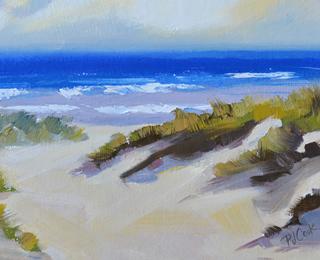 Beach Dune Path