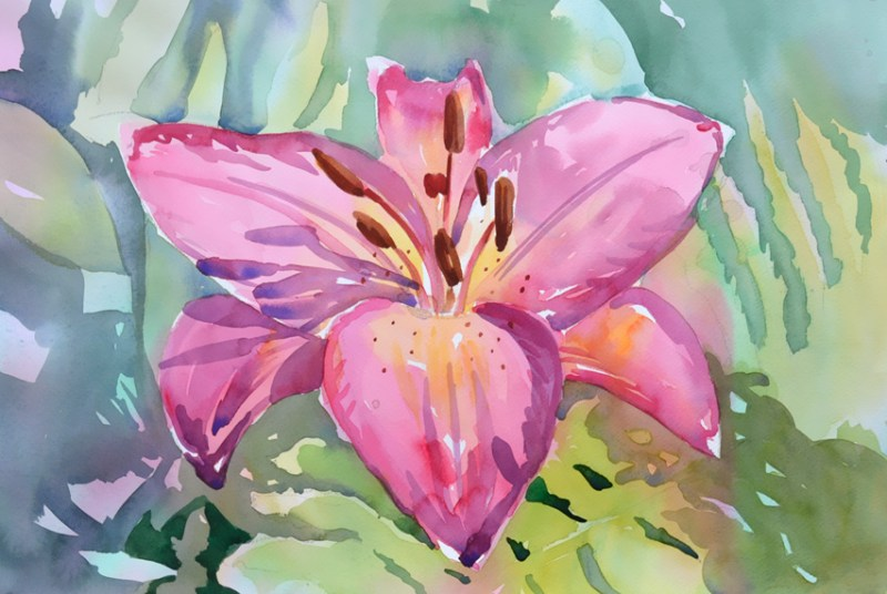 pink lily flower watercolor painting