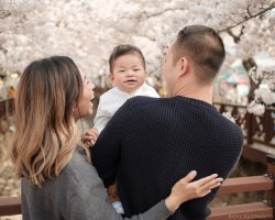 Jinhae Cherry Blossom Festival Yeojwacheon Stream Family Portrait Photographer South Korea-2
