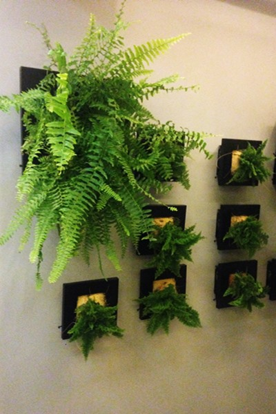 wall vases (4)
