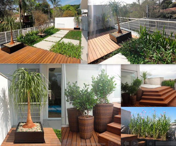 decorative gardens decorated garden (4)