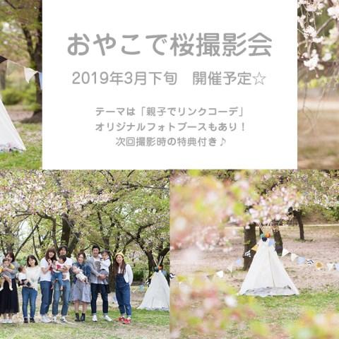 おやこで桜撮影会 2019 開催予定☆