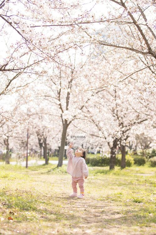 《桜撮影会2021》ご参加ありがとうございました🌸