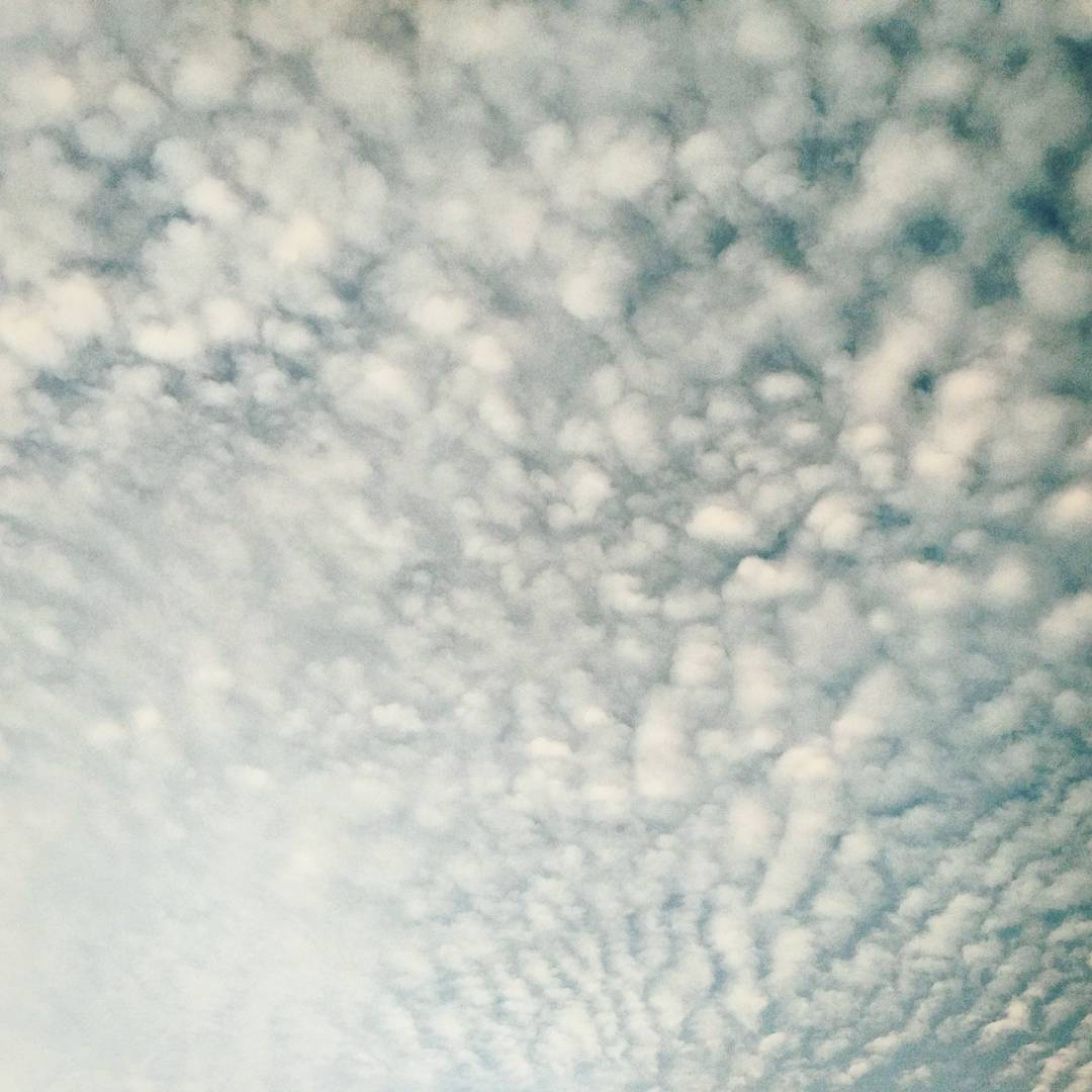Look up at the sky Fields of cotton drifting by Can you hear them sigh?  #singapore #ceramics #inspiration