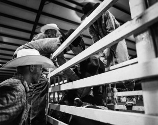 Kevin-Terrell-Rodeo-2