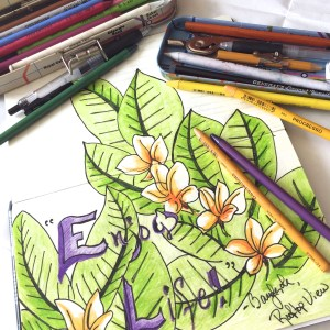 StudioDeanna_coloredpencils1