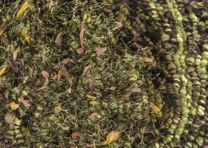 Rainforest Floor - Rug Hooking