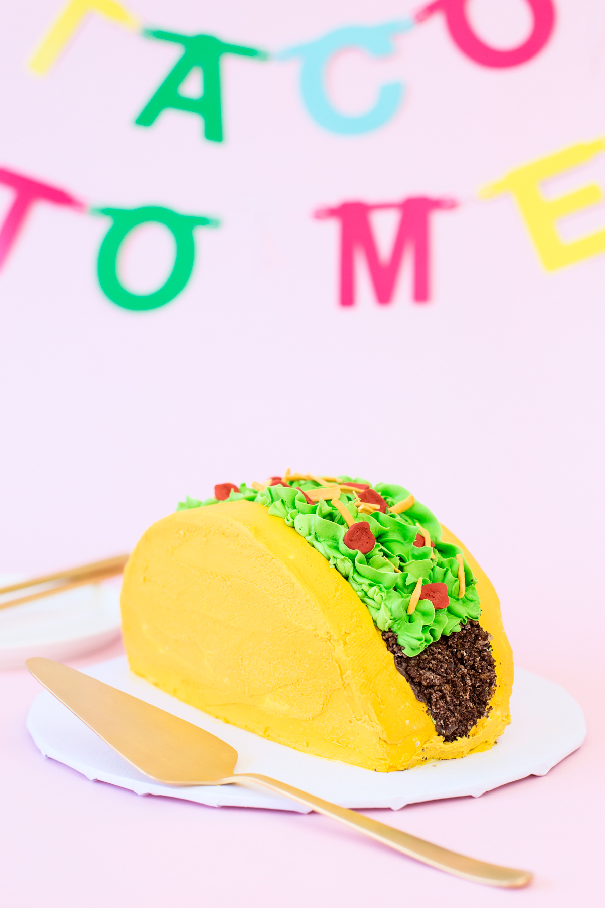 DIY Taco Cake Studio DIY