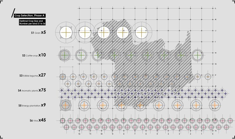 optimisation_phase a©studioentropia architects