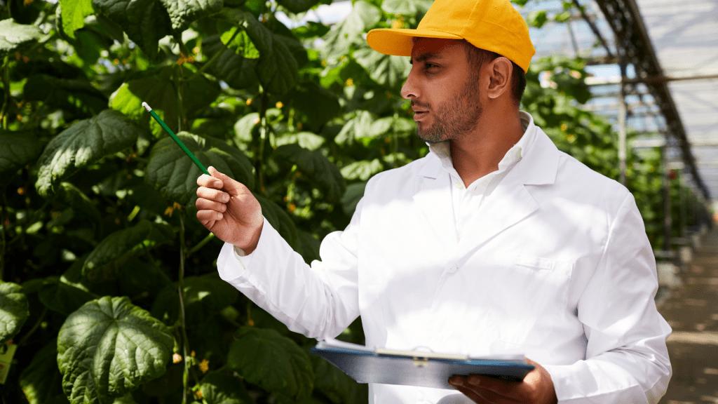 sistema de gestão do agronegócio