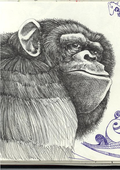Ape_from_Sketchbook_29_04_09_by_LaquaParla