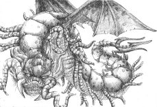 lacraia-dragão