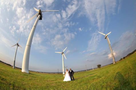 Sesja ślubna przy wiatrakach