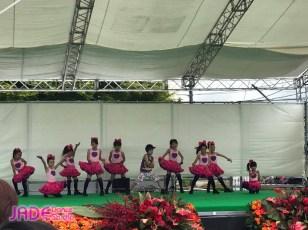 花フェス出演2017