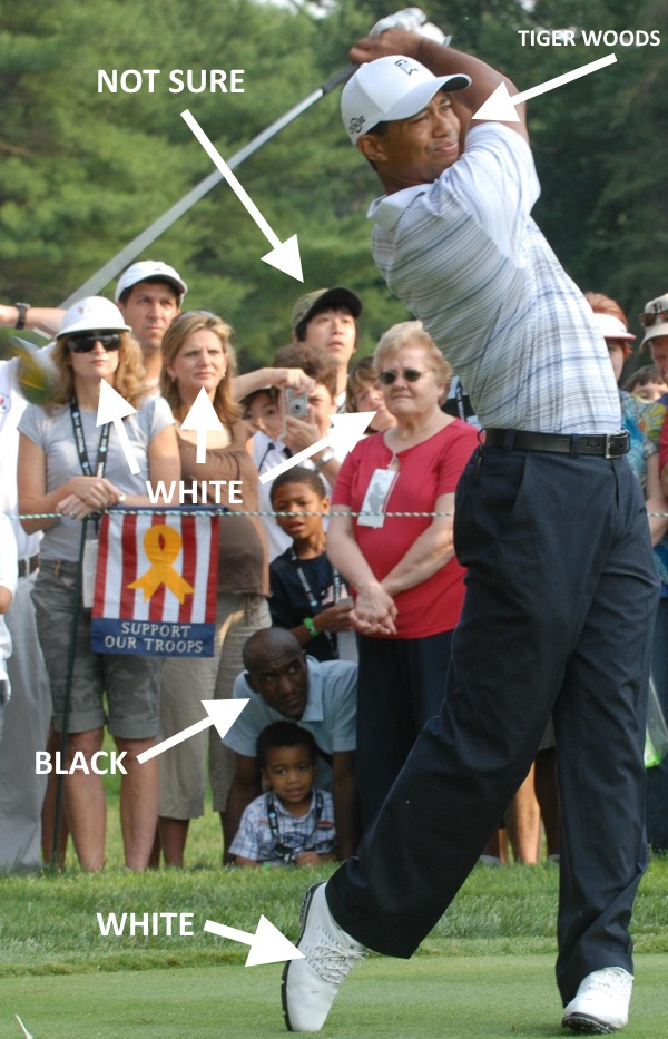 Tiger Woods ethnicity profile