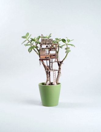 miniature-treehouse-houseplants-somewhere-small-jedediah-corwyn-voltz-7