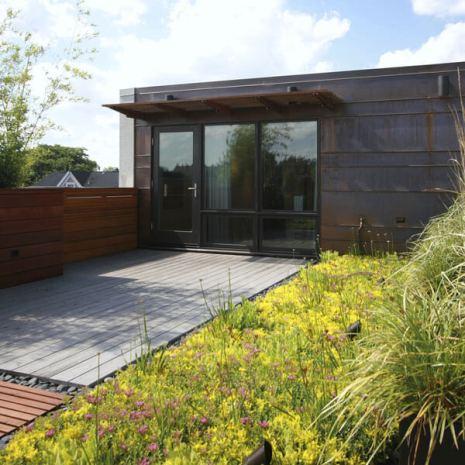 Green home roof garden