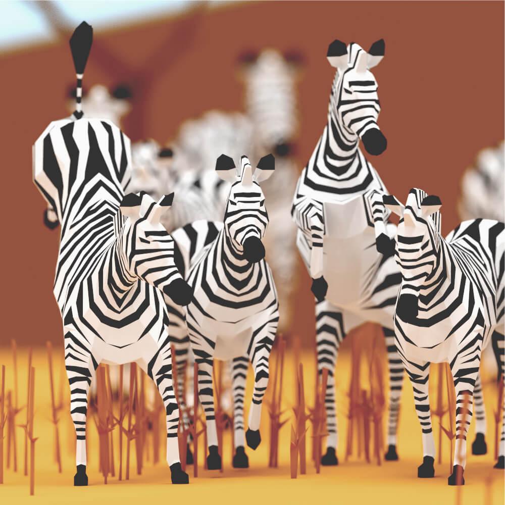 StudioOchi_Zebras_Preview04