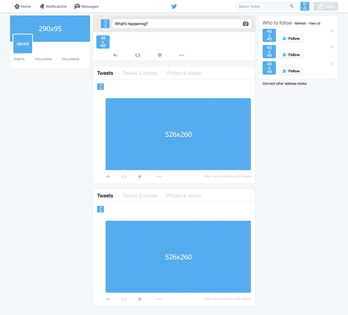 blank twitter template students