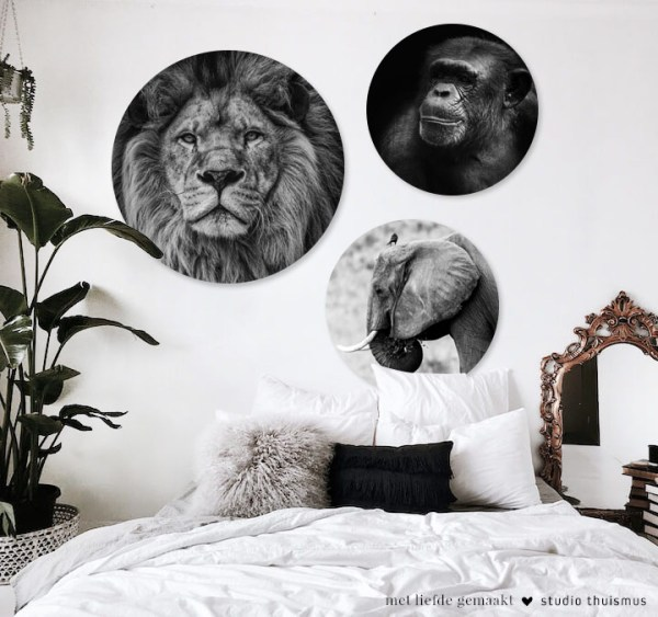 WALLIES-wanddecoratie-safari