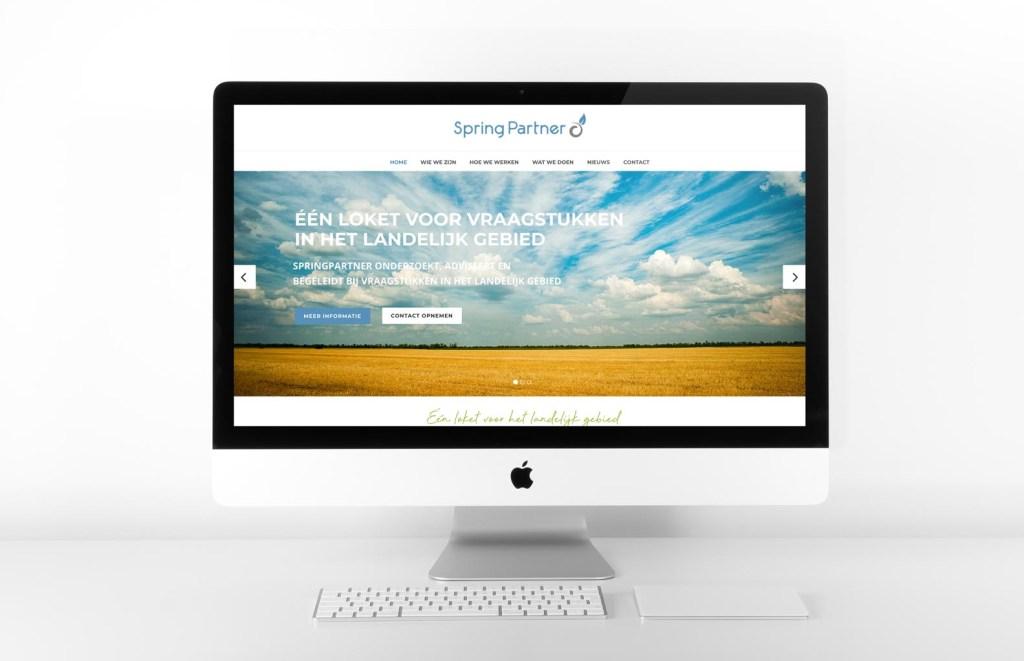 Webdesign-Springpartner