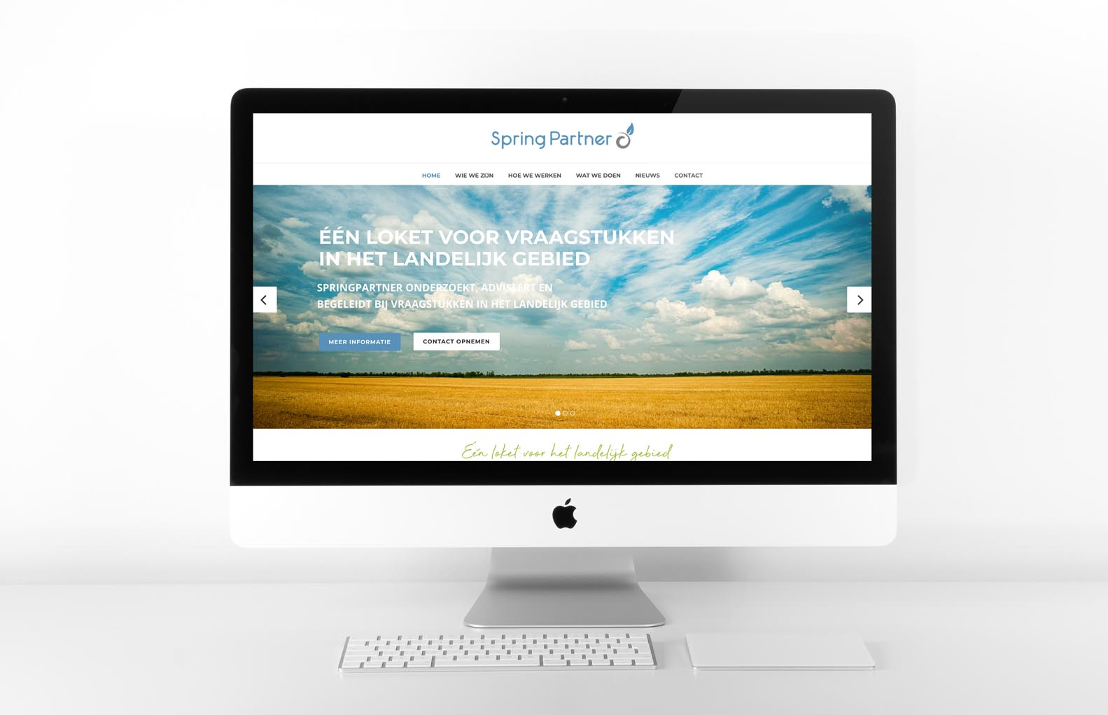 Webdesign-Springpartner