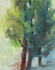 Susan Shaw, Summer Trees, oil 8x10