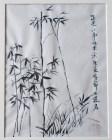 Joanne Wang, Bamboo
