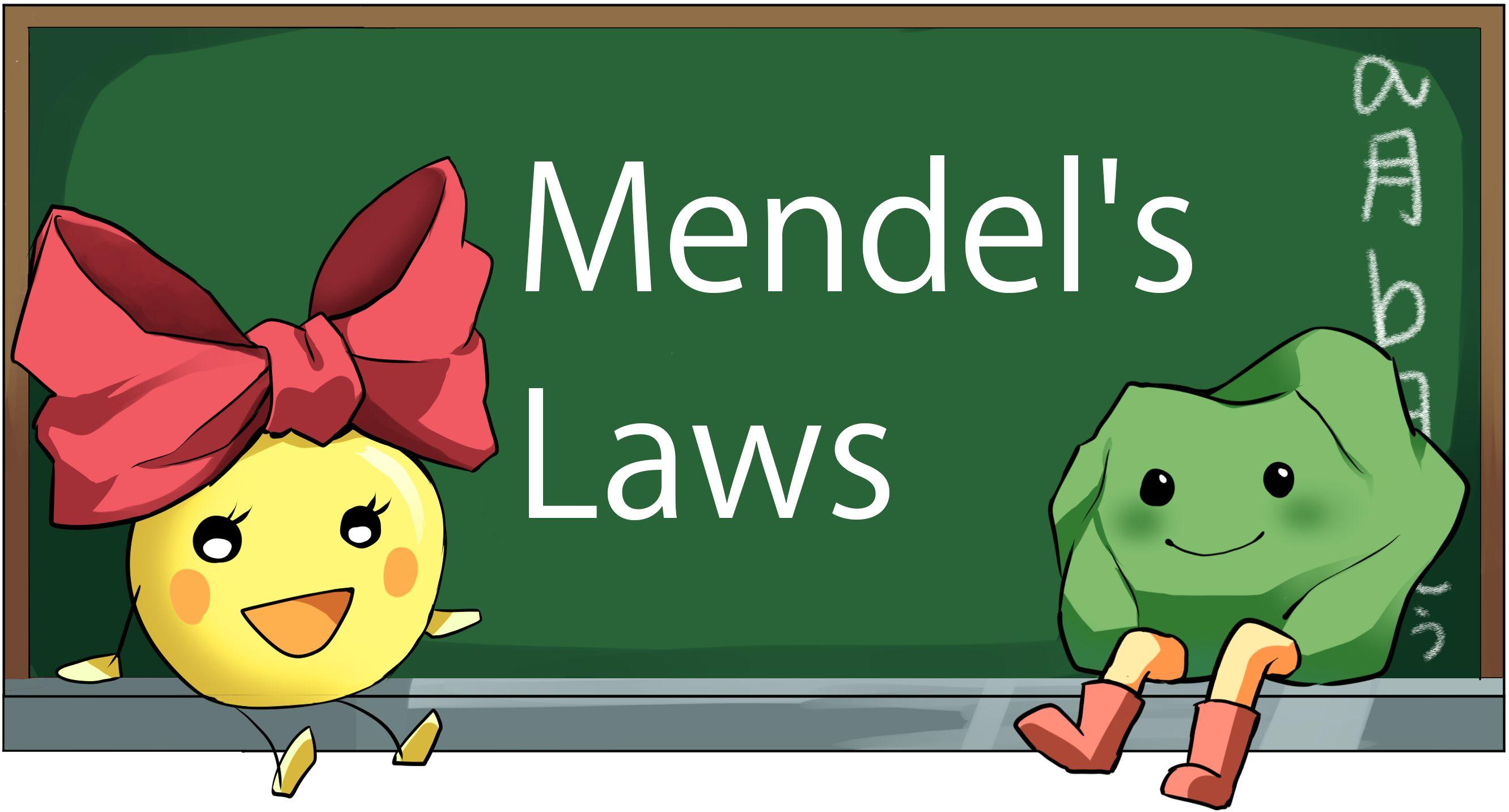 Mendel S Three Laws Studiousguy