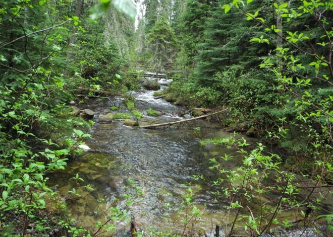 Karst spring trail
