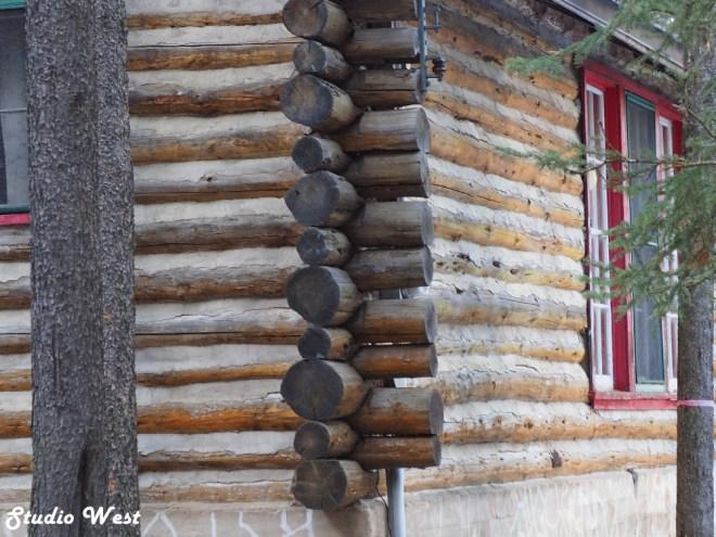 Cypress Hills log homes